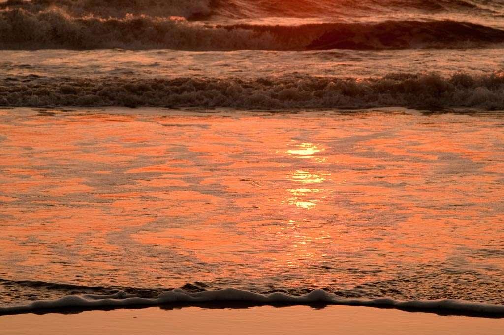 Abstractere beelden mogen ook. Bij dit voorbeeld werd niet rechtstreeks in de zon gefotografeerd, dus is er ook wat minder contrast, waardoor makkelijker te belichten. Nikon D700 • ISO 400 • f/11 • 1/160 @ 135mm.