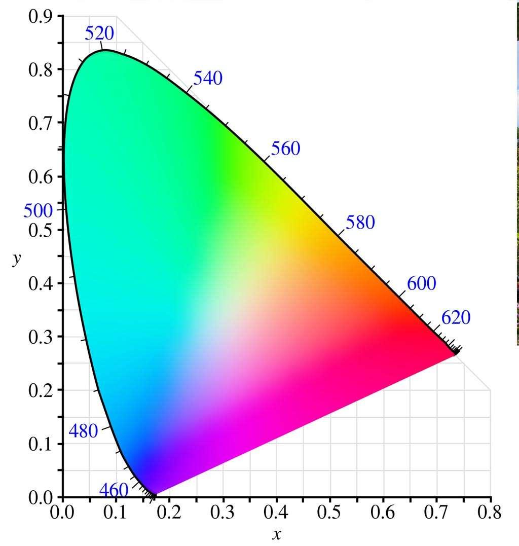 In de jaren dertig van de vorige eeuw heeft de Commission Internationale de l'Eclairage (CIE) het complete kleurenspectrum beschreven dat ons oog kan zien. Bovenstaand CIE 1931 colorspace chromaticity diagram is een plot van de kleuren die het menselijke oog kan zien. Dit diagram wordt heel veel gebruikt om bijvoorbeeld te laten zien hoe bijvoorbeeld verschillende kleurruimten zijn gedefinieerd.