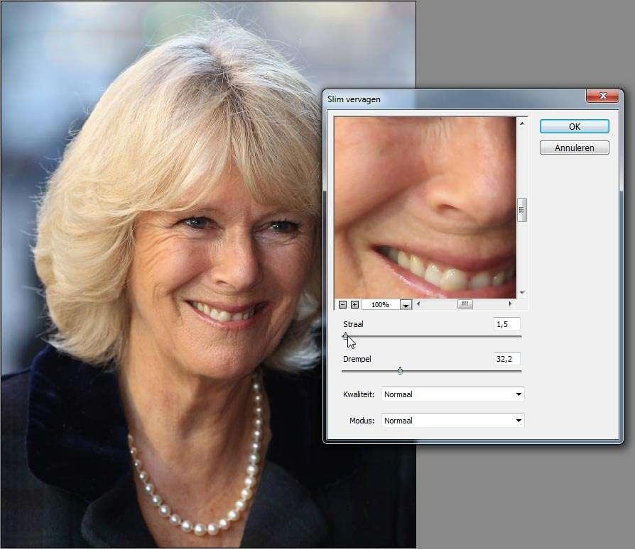 Wees terughoudend met toepassen van vervaging bij Perfect portret. Een straal van 2 pixels is vaak al genoeg. Gebruik het retoucheerpenseel voor grotere oneffenheden.