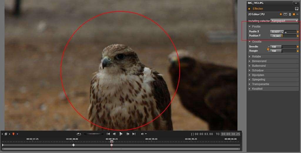 De kop van de vogel is nu mooi in het midden gecentreerd met de optie Positie.