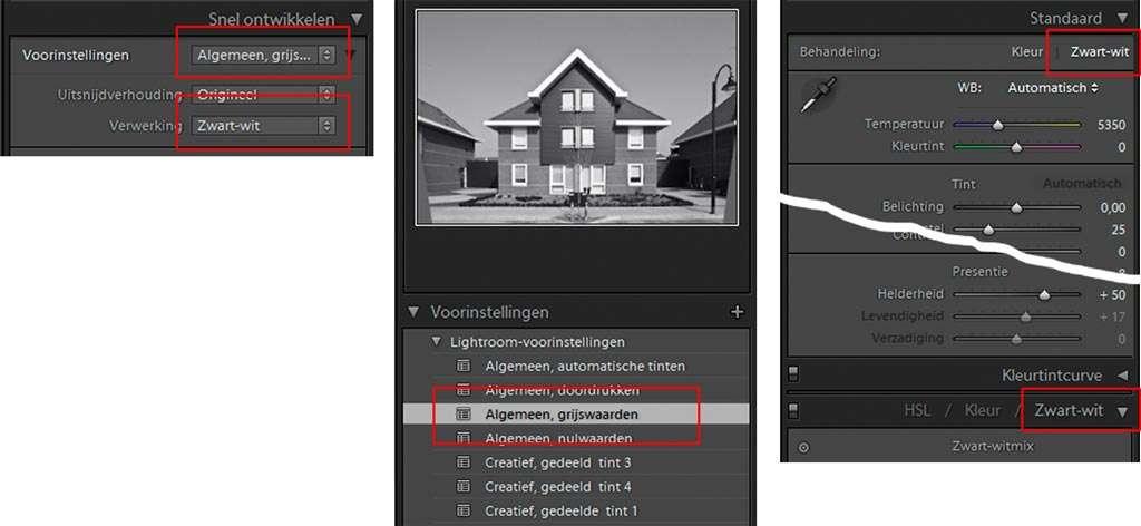Alle mogelijkheden om een kleurenafbeelding in grijswaarden (zwart-wit) op te zetten.