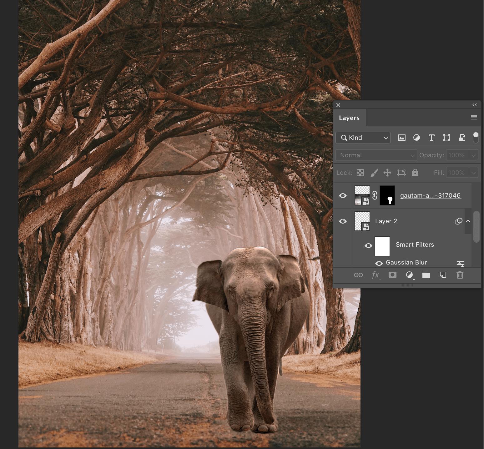 De olifant is nu geplaatst in een andere omgeving