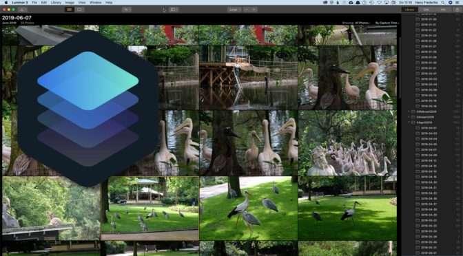 Nieuwe versies voor macOS en Windows: Luminar 3.1.1