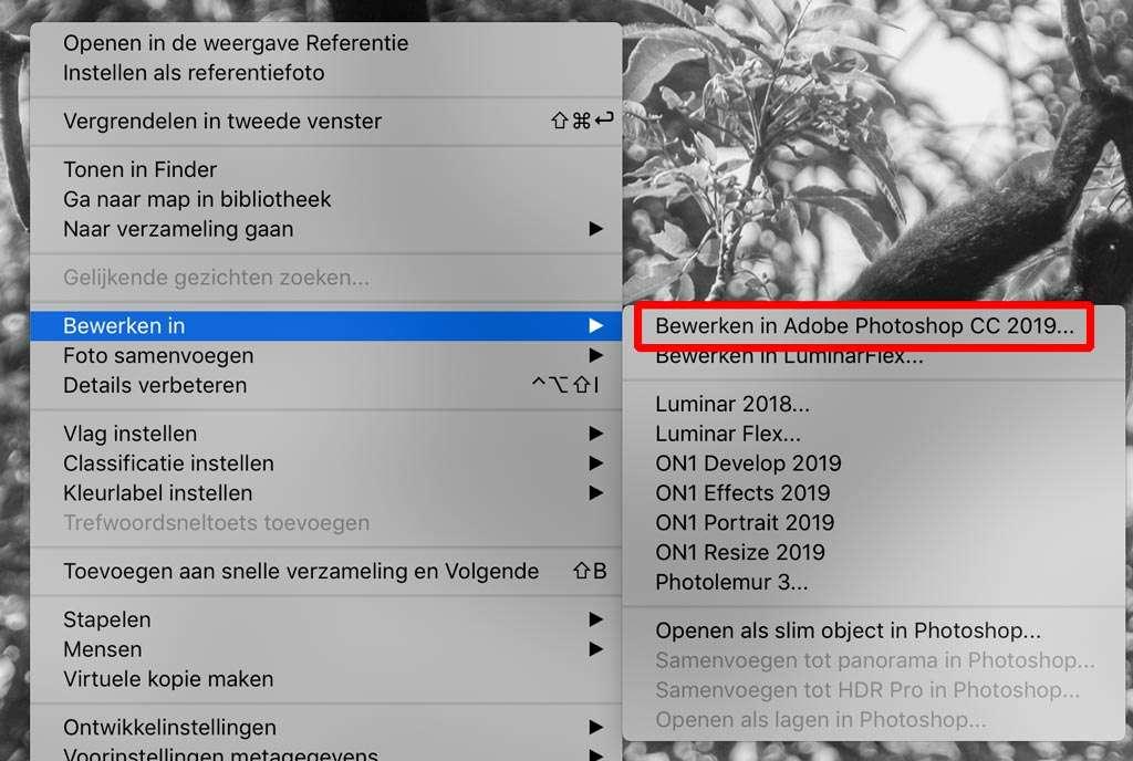 Luminar Flex als Slim Filter in Photoshop