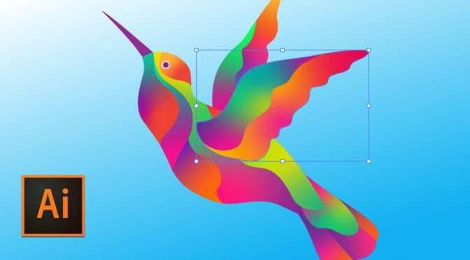 Hoe maak je vrije vormverlopen in Adobe Illustrator?