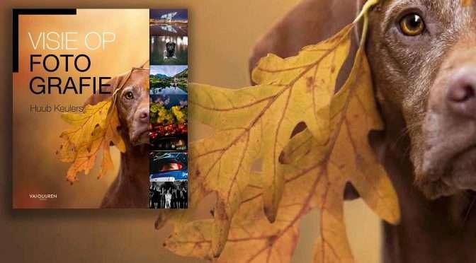 Visie op fotografie: Hondenfotograaf Monica Vergunst van der Maden